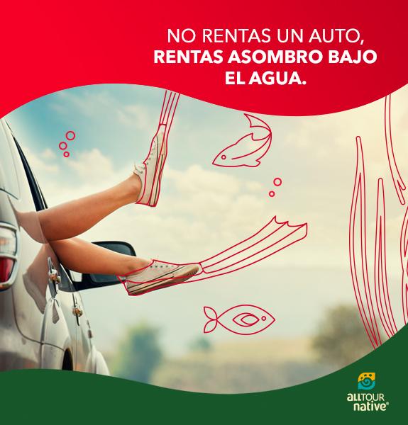 Con Avis no rentas un auto, rentas asombro bajo el agua.